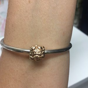 Pandora Rose Gold Family Charm